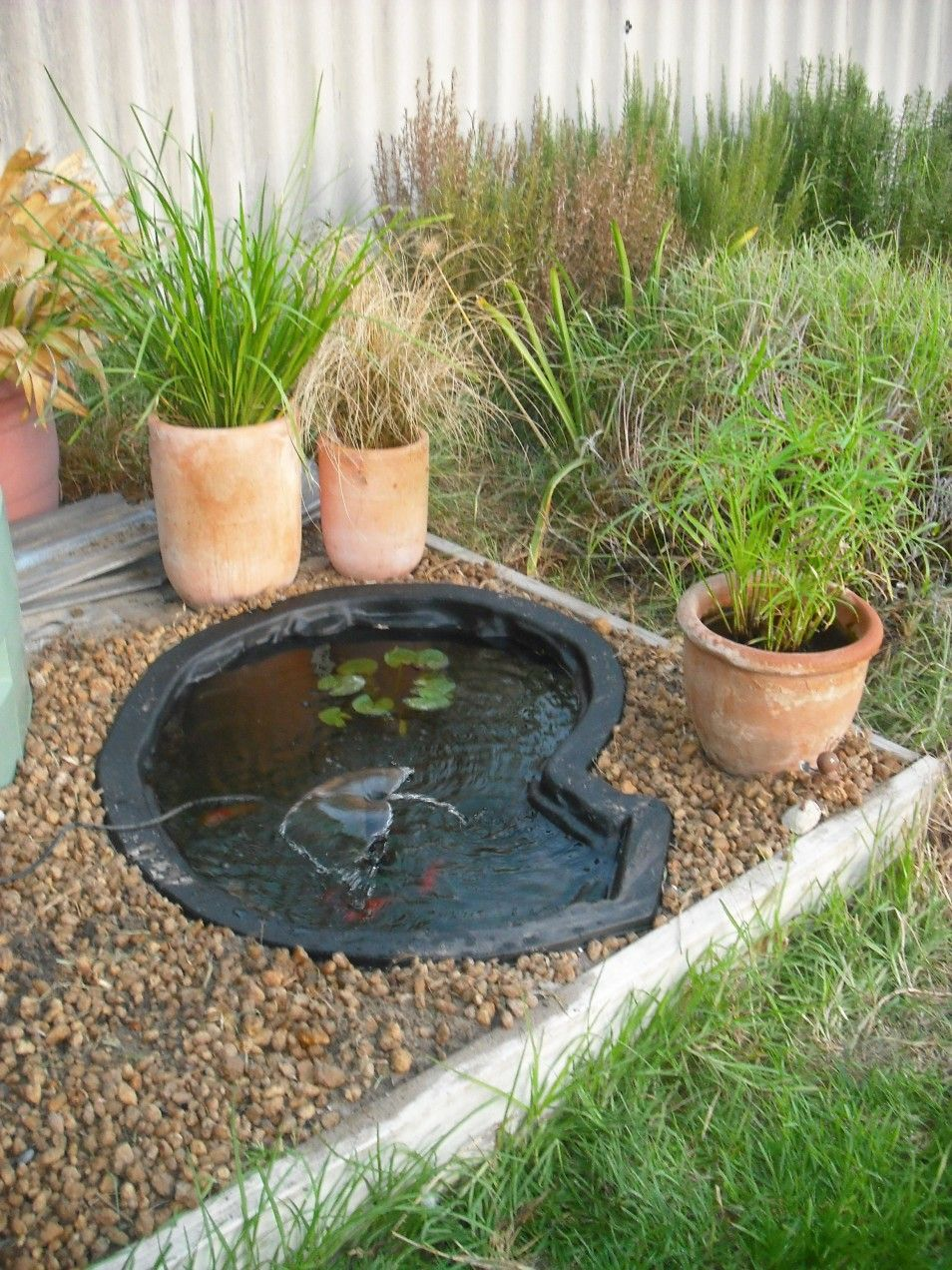 40 Minimalist Fish Pond Design Ideas for 2019 | How to ...