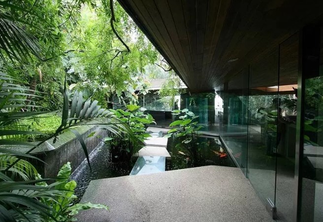 cool fish pond design ideas