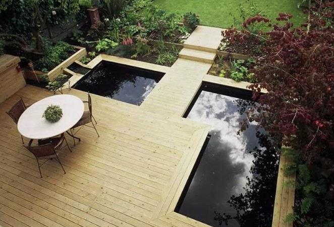 amazing fish pond design