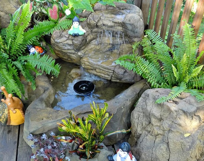 best fish pond ideas