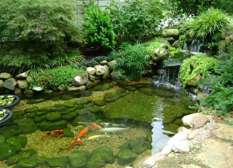Cool Minimalist Fish Pond Design Ideas