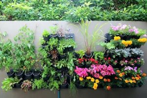 10 Best Vertical Gardening Ideas That Are Easy To Achieve AND Look Great!