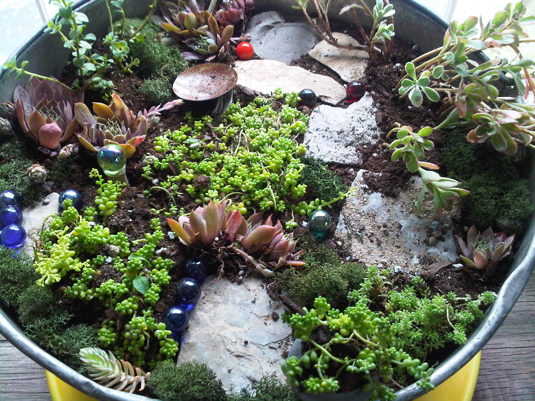 40 Best Fairy Garden Ideas