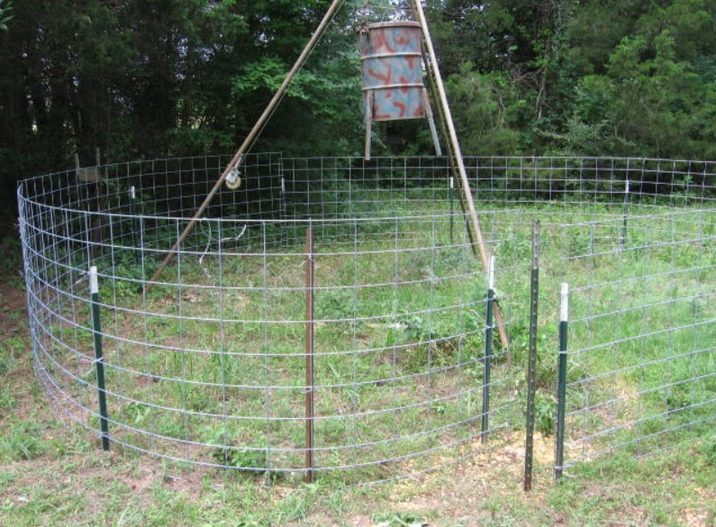 Best Hog Wire Fence Design and Ideas for Your Backyard