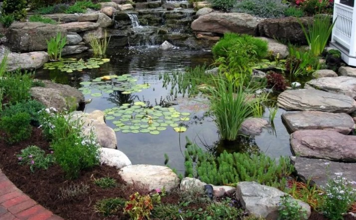 simple fish pond design