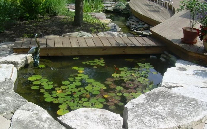 awesome fish pond design ideas