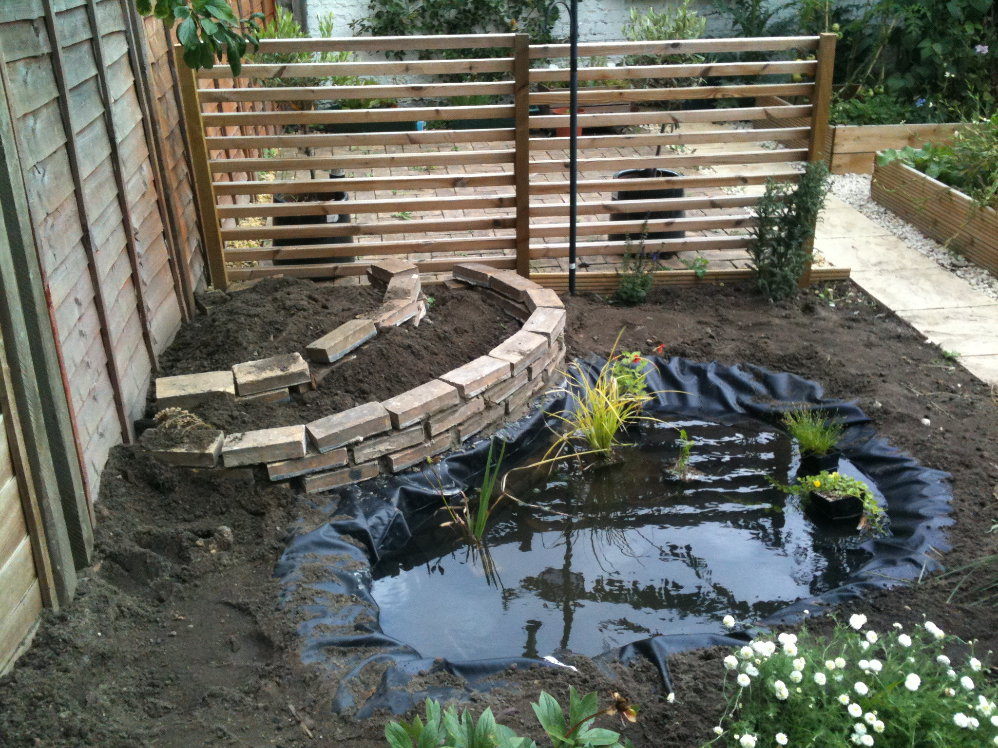85 Minimalist Fish Pond Design Ideas For 2019 How To Build It