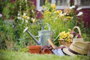 5 Fantastic Low Maintenance Features for the Lazy Gardener